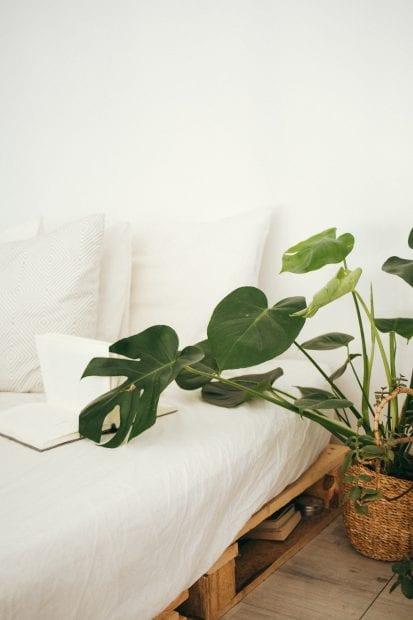 inside-your-mattress